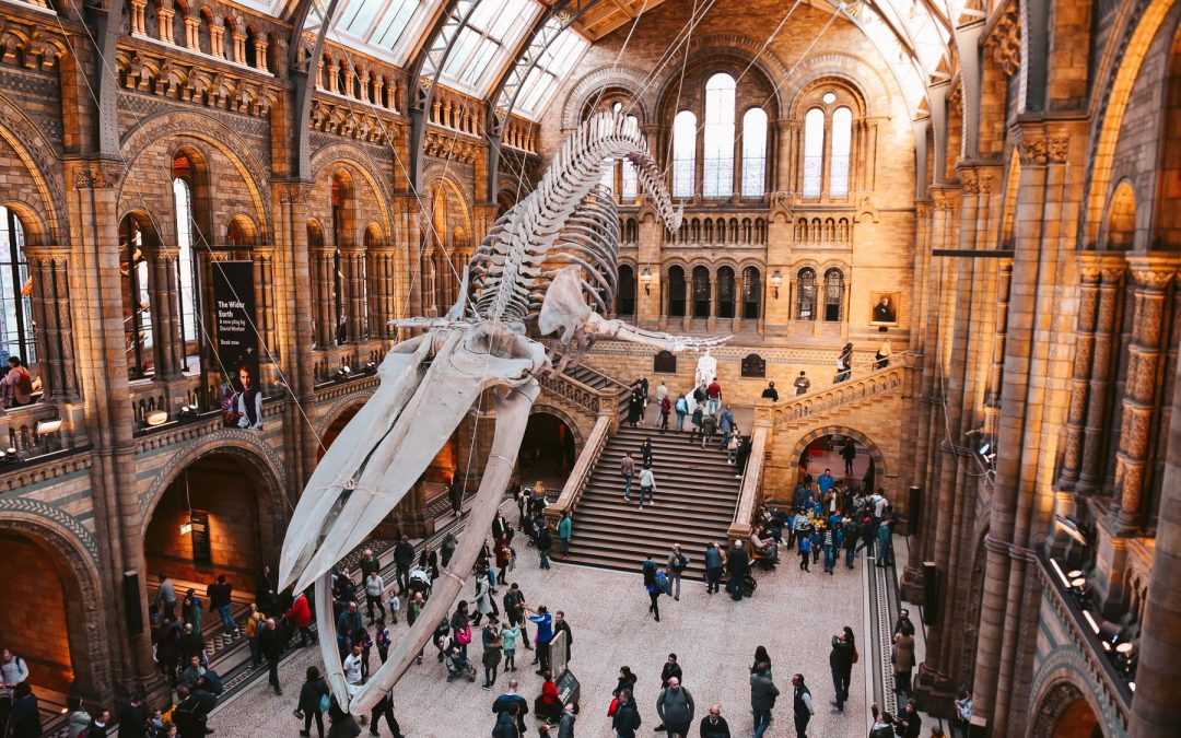 Jak zorganizować weekend z dziećmi w Londynie – moje wskazówki