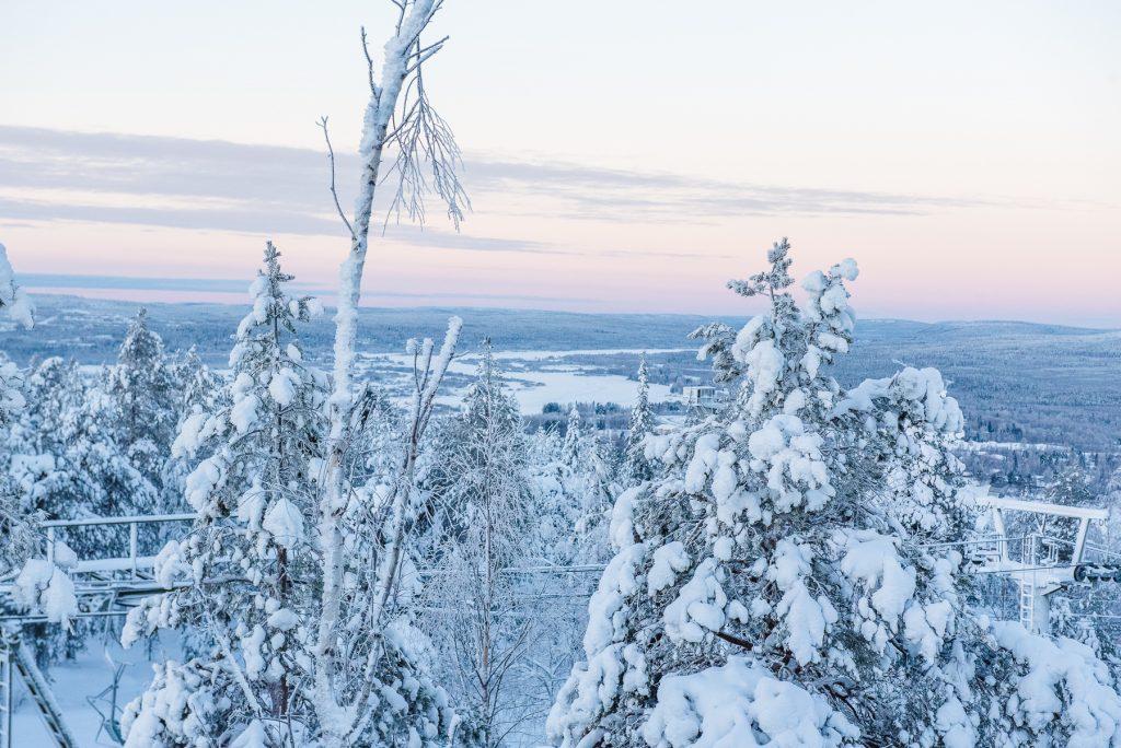 Laponia Psi zaprzeg wioska swietego mikolaja wyjazd do laponii rovaniemi ousnavaara