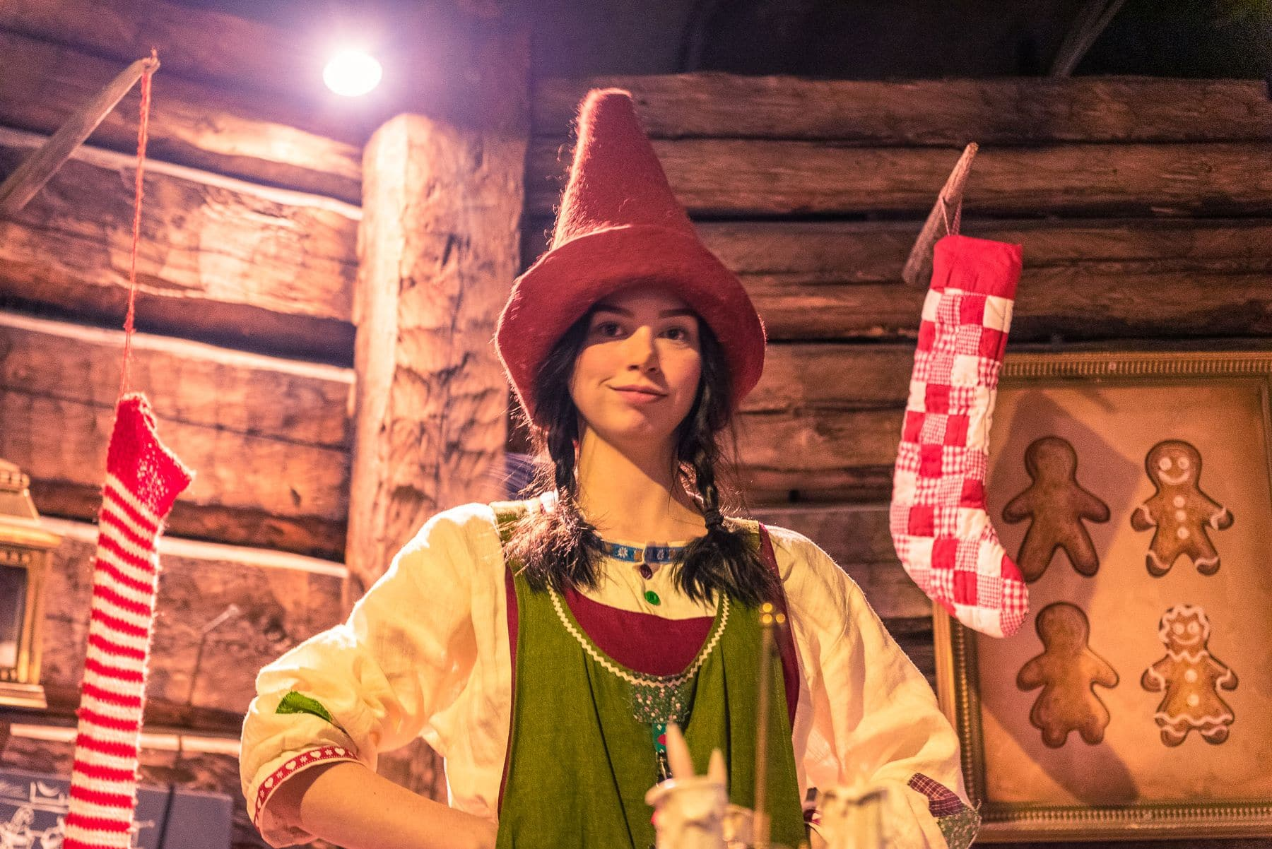 Laponia Psi zaprzeg wioska swietego mikolaja wyjazd do laponii rovaniemi_000776