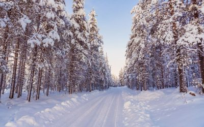 Informacje praktyczne dotyczące naszego zimowego wyjazdu do Laponii w Szwecji