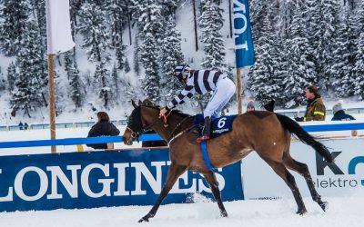 Wyścigi konne White Turf w St. Moritz oraz co w St. Moritz warto zobaczyć