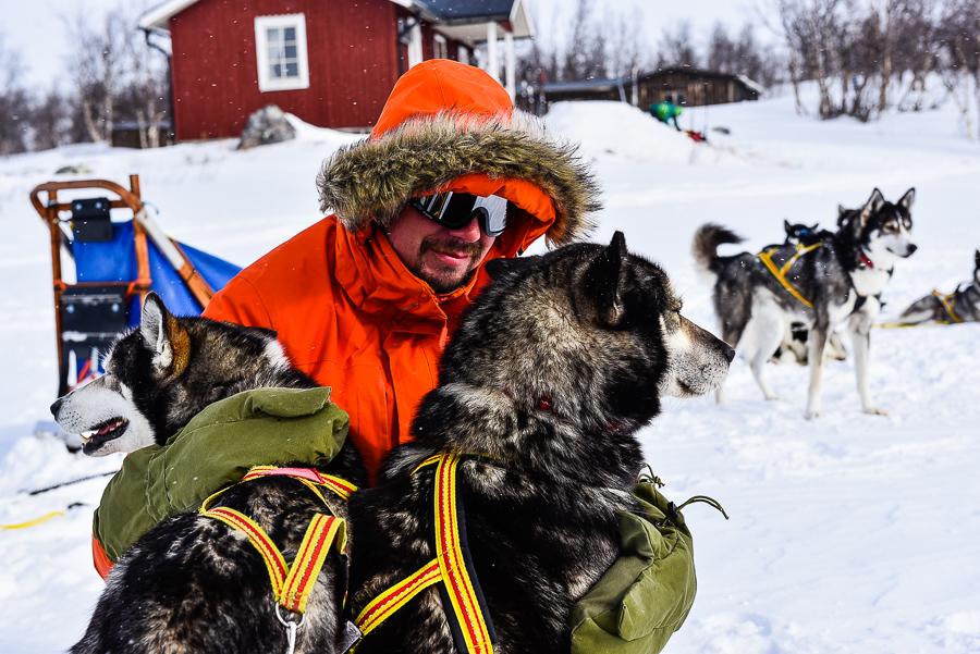 Psim zaprzęgiem po szlaku Kungsleden – informacje praktyczne